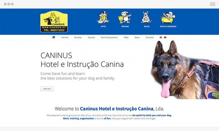 Website Design | Logo Design | GRAPHIC & WEB DESIGN
